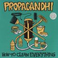 How To Clean Everything (Platten der Neunziger)