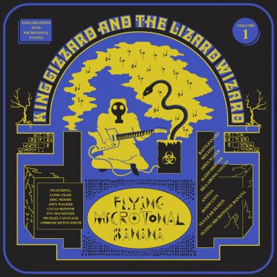 flying microtonal banana king gizzard