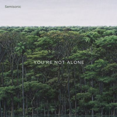 semisonic youre not alone